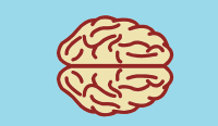 brain-494153_640