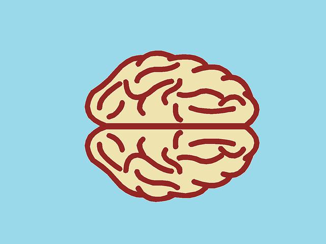 Neuroscience Through Animation